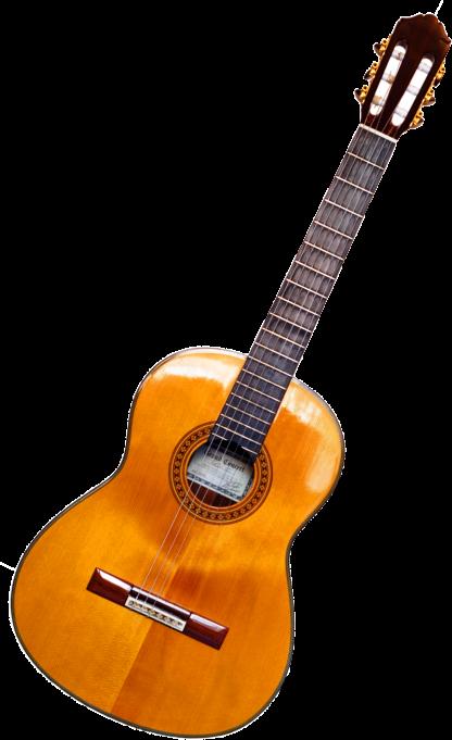 גיטרה קלאסית DRAGON C-3902