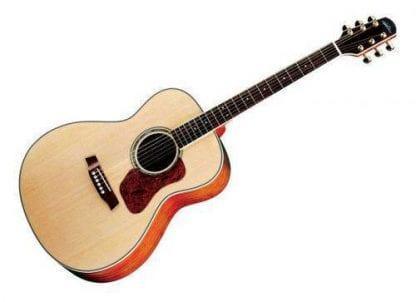 גיטרה אקוסטית Natura G640 Walden