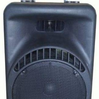 בידורית Pro Audio XR12P