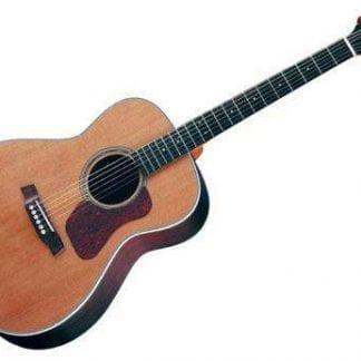 גיטרה אקוסטית Natura G730 Walden
