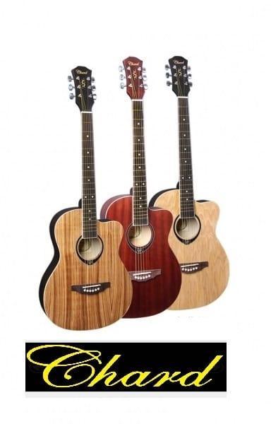 גיטרה אקוסטית מוגברת מקצועית מבית EB-16E CEHARD