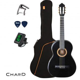 חבילת גיטרה EC-3800