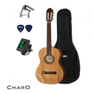 חבילת גיטרה EC-3900